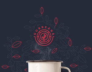 Gorreana Tea - Brand identity - Proposal